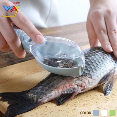 ที่ขอดเกล็ดปลา แบบมีฝาปิด ทำให้เกล็ดไม่กระเด็น คละสี